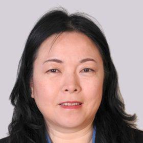 Feng Jie